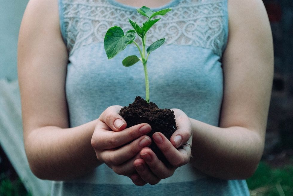 7 Easy Ways To Stay Eco-Friendly In College