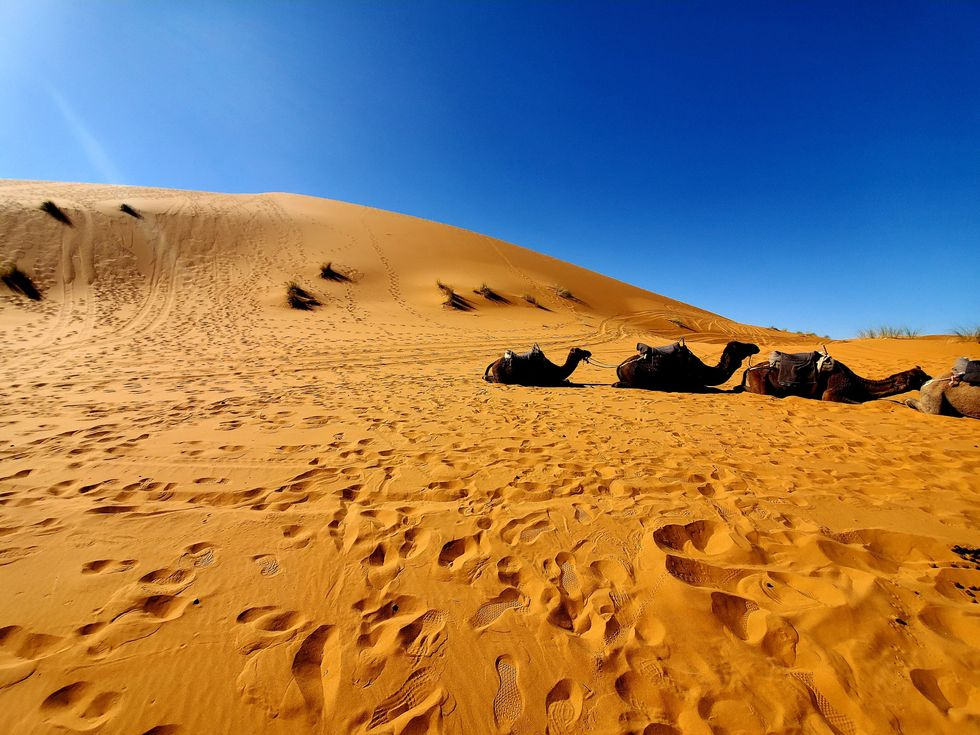 I Travelled To The Moroccan Desert On A School Trip, And, In The Middle Of Nowhere, I Found Myself