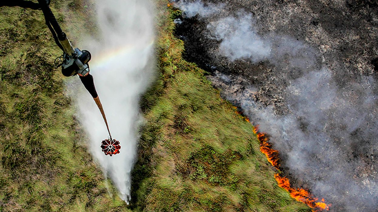 Oreos, KitKats Among Other Global Brands Fueling Indonesian Forest Fires
