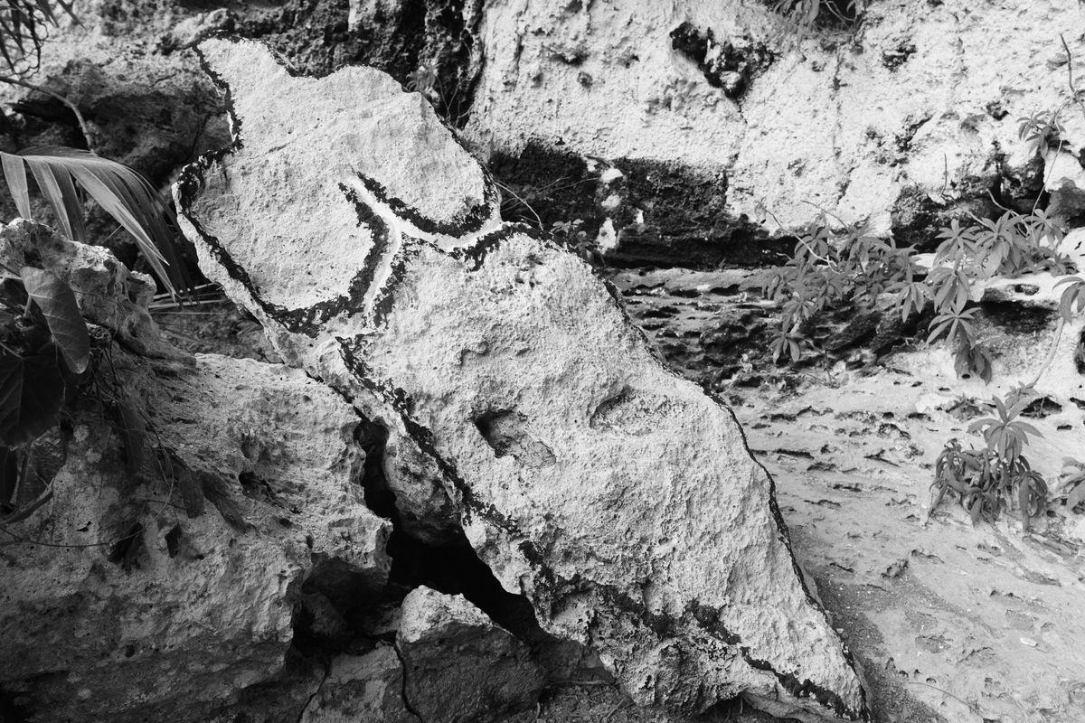 See Ana Mendieta's Cave Art Up Close