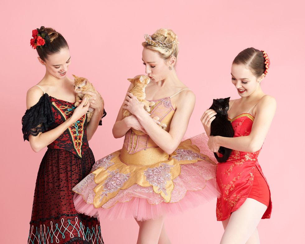 Three ballerinas in Nutcracker costumes hold kittens in front of a pink background.