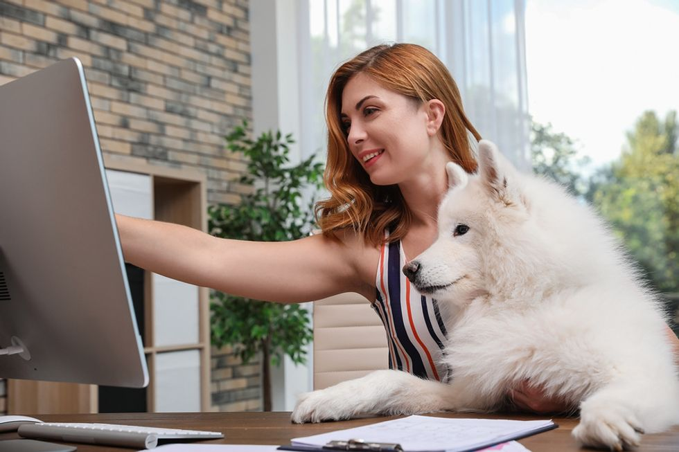 Young woman working at her desk while her dog patiently looks at her computer.