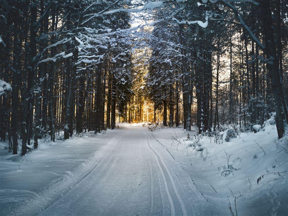 Five best winter day trips in Arizona