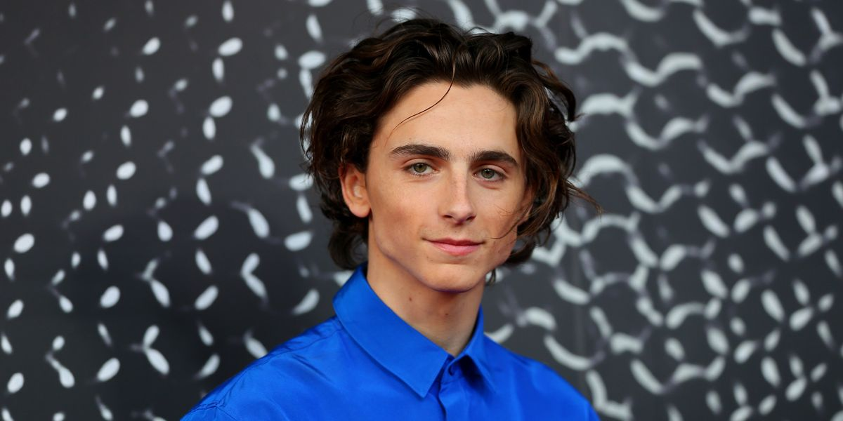 Timothée Chalamet Is Taking a Break From Acting