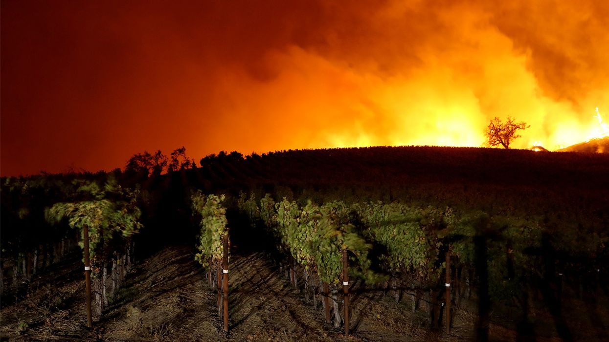 Sonoma County Wildfire Spreads 7,000 Acres in Less Than Five Hours