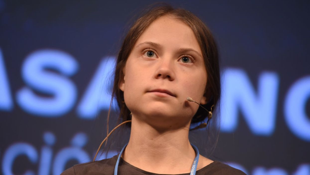 Greta Thunberg 'ignored' by world leaders at climate summit, admits protests have achieved 'nothing'