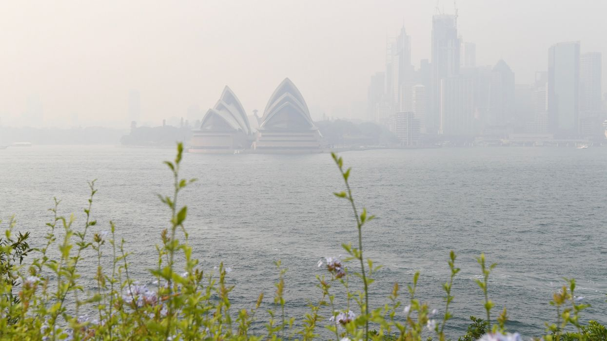 Sydney Is Choking on Bushfire Smoke, Poorest Residents Struggling Most