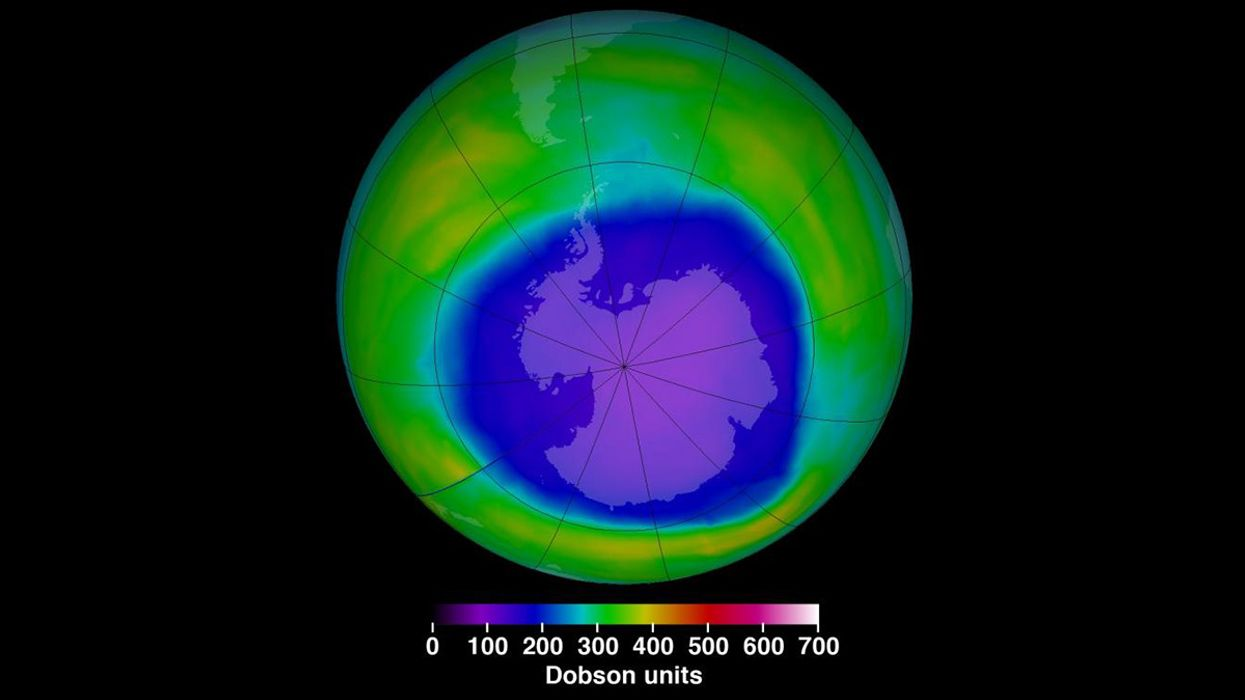 Saving the Ozone Layer 30 Years Ago Slowed Global Warming. Can Similar Cooperation Now Solve the Climate Crisis?