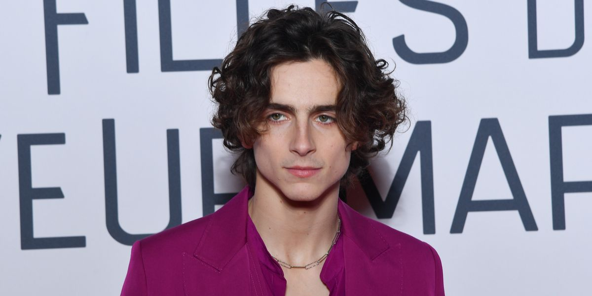 Timothée Chalamet's Tiny Eiffel Tower Keychain Is Everything