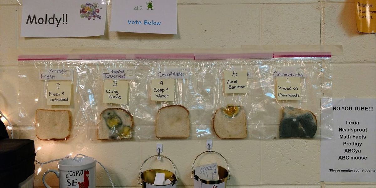 This teacher's eye-opening lesson about handwashing is something all parents need to see