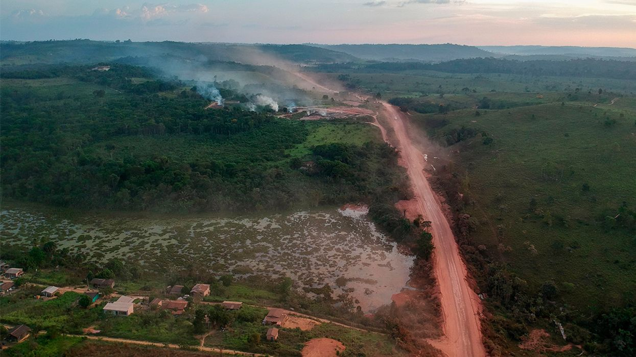 Amazon Sees Alarming Rise in Deforestation