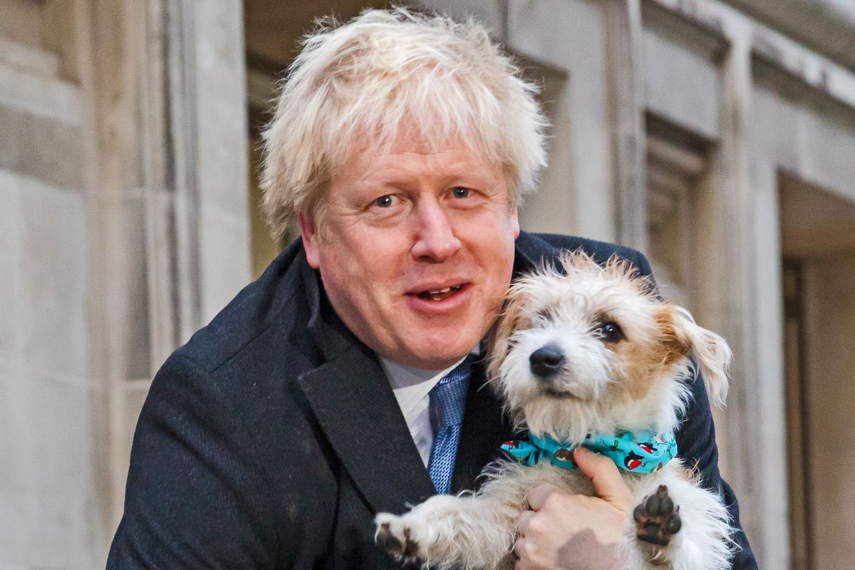 La sinistra snob sbaglia le previsioni poi attacca i poveri perché votano Boris