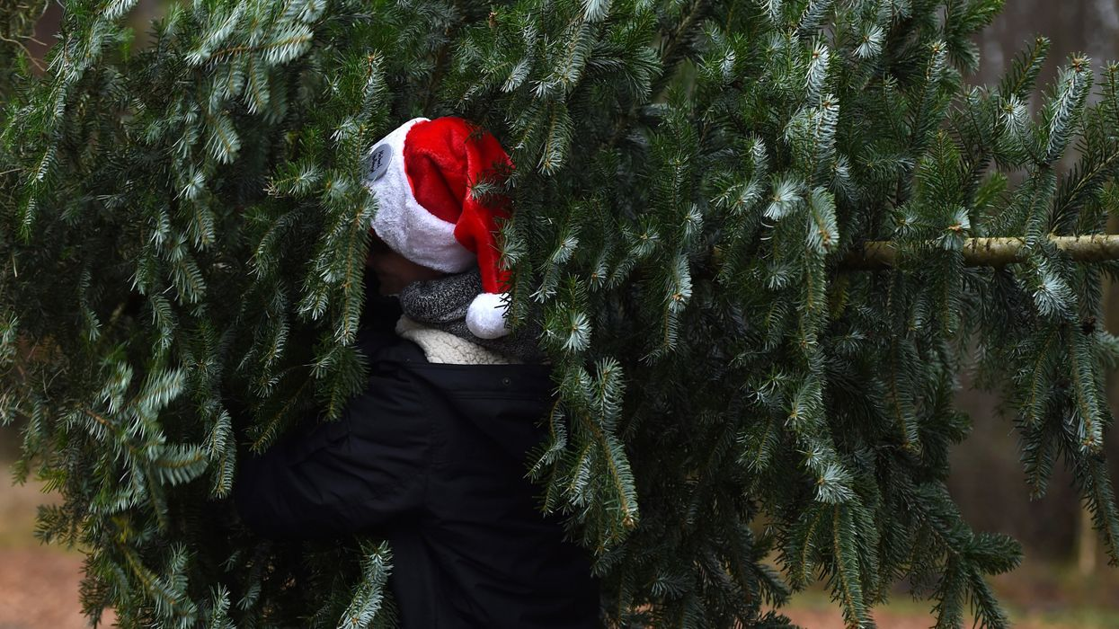 how to make your holiday season more sustainable