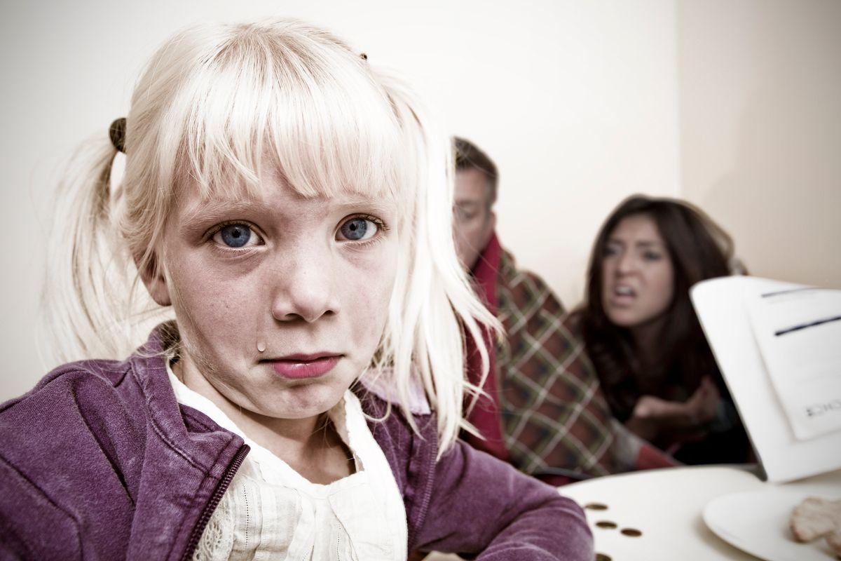 «Relazioni false per togliere i figli ai genitori. Dovevamo tutelarli da pedofili e cannibali»