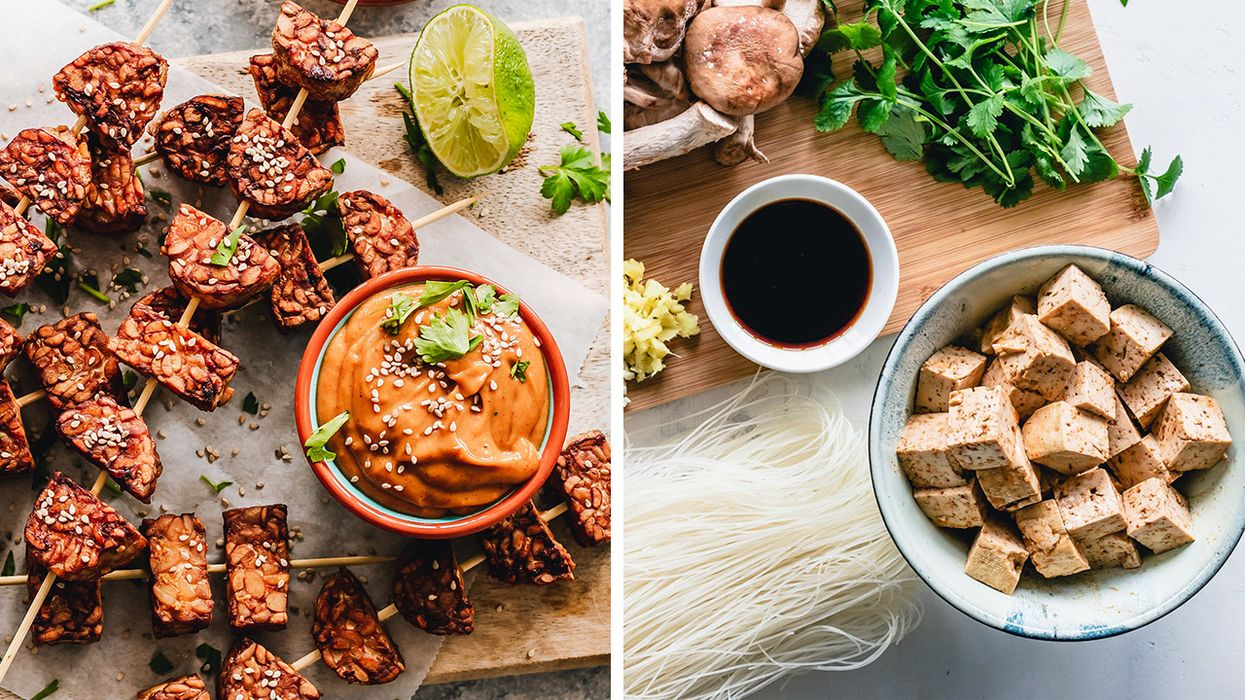 What's the Difference Between Tempeh and Tofu?