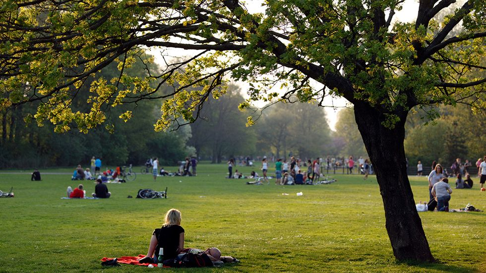 Parks Are Good—but They Can (and Should) Be Better
