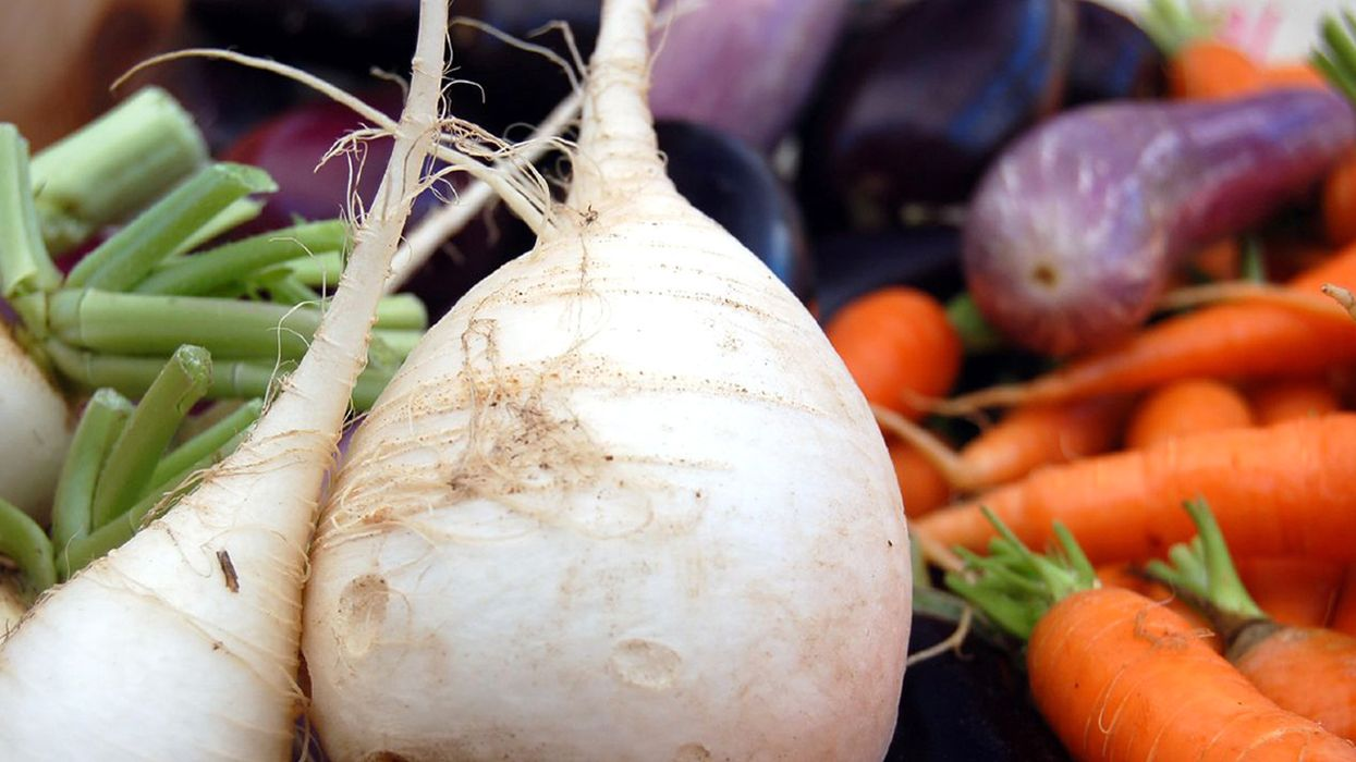 All You Need to Know About Turnips