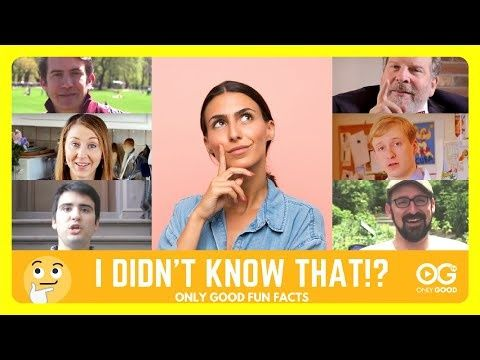 SERIES: I Didn't Know That! - This collection is chock full of fun facts that may just give you reason to pause....and smile!