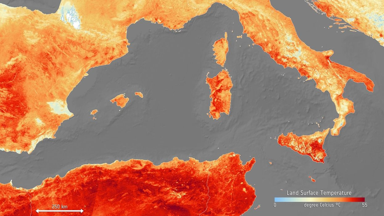 This Is Almost Certainly the Hottest Decade on Record, UN Weather Agency Says