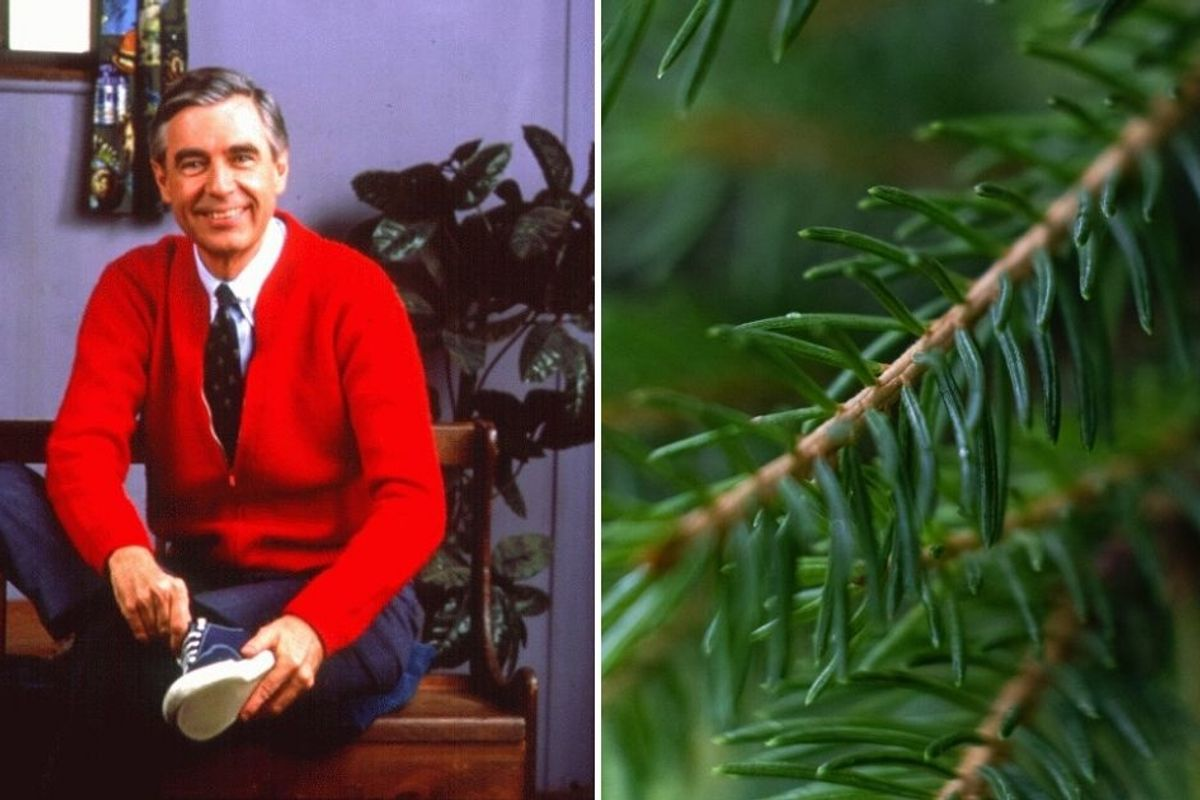 Hallmark asked Fred Rogers to create a holiday display. His design was peak Mr. Rogers