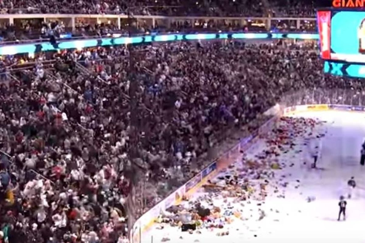 Watch as over 45,000 stuffed animals are thrown onto the ice in a record-breaking 'Teddy Toss'