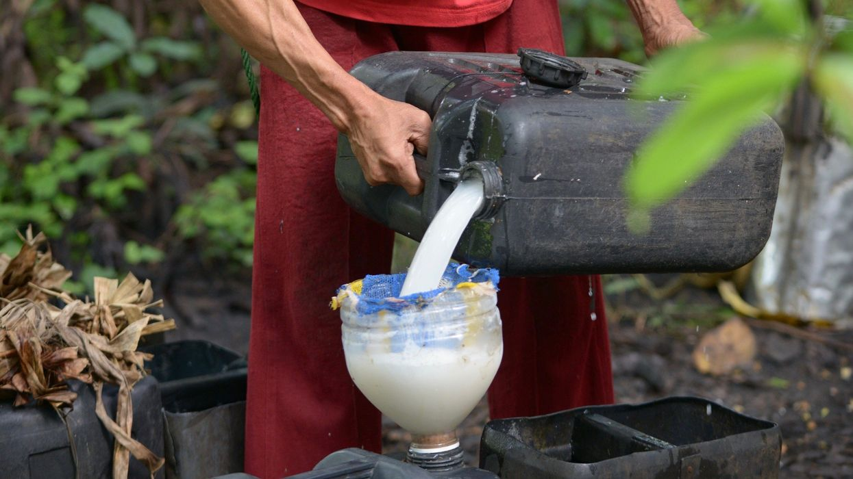 11 Dead, 300 Hospitalized After Drinking Poisonous Coconut Wine