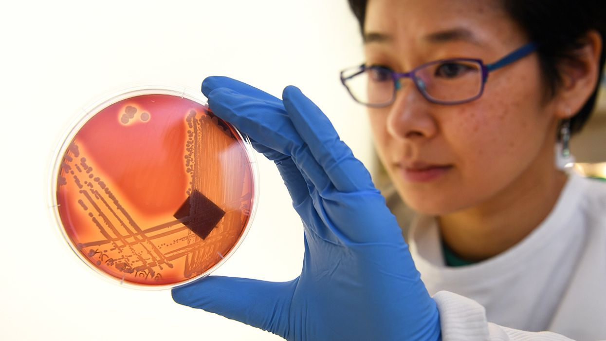 Antibiotic Crisis Coming as Superbugs Gain Strength and Drug Companies Go Bankrupt