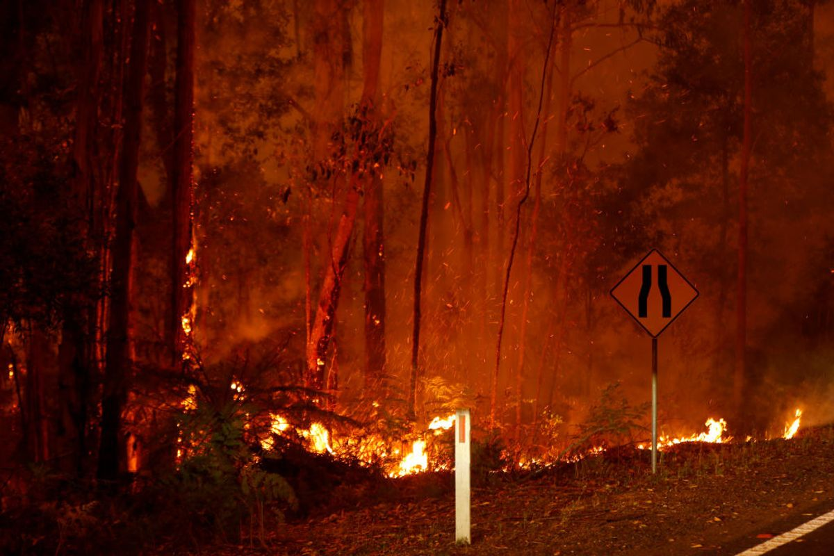 Anohni Speaks Out As Australia Burns