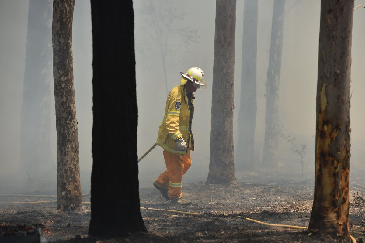 How to Help Australian Fire Victims