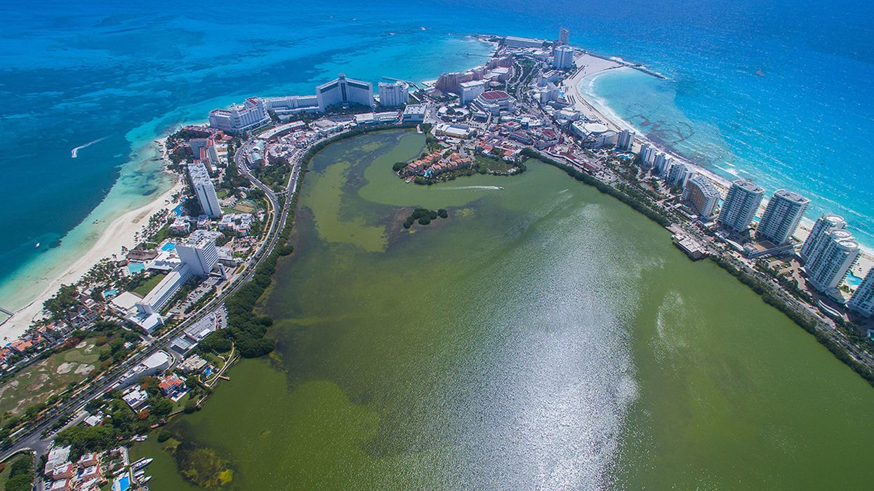Cancun Businesses Take Out Insurance Policy on a Coral Reef