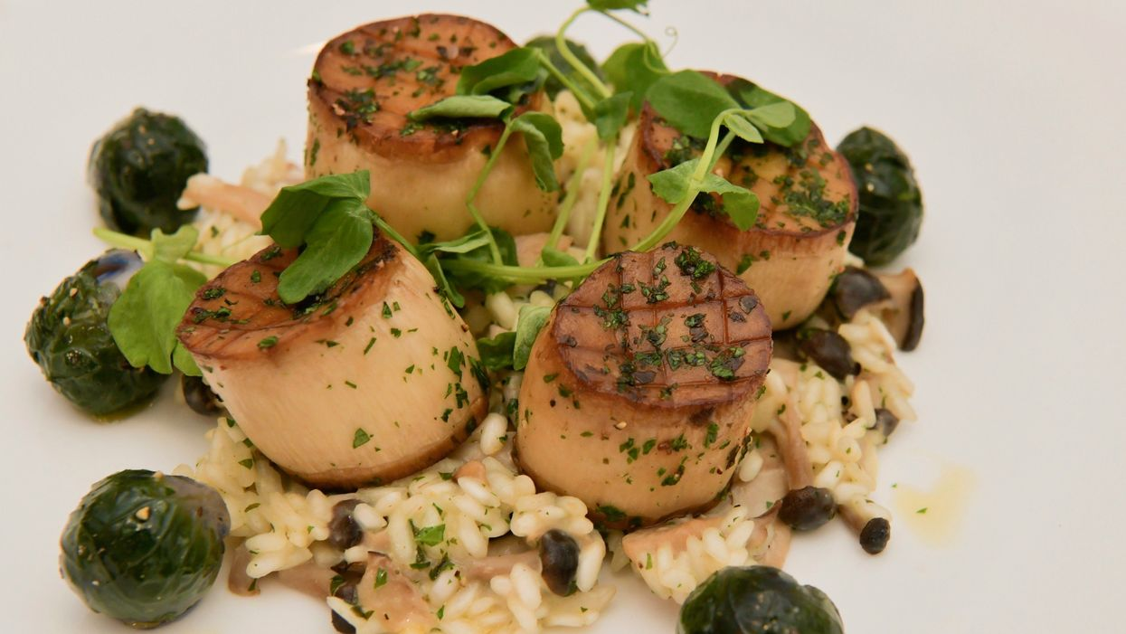 77th Annual Golden Globes Serves Vegan Meal for All