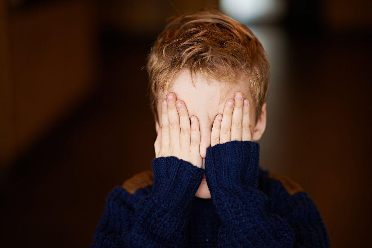 Dopo Bibbiano i figli scippati sono un tabù