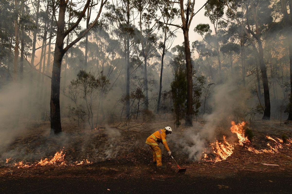 Non è solo il cambiamento climatico. L'Australia in fiamme per i piromani