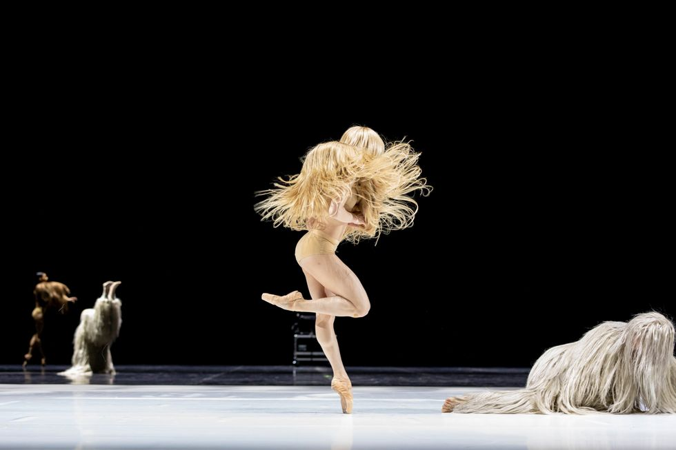In Alexander Ekman's LIB, a dancer wearing what looks like a shaggy wig of blonde hair that covers their entire torso balances en pointe. A similarly hair-covered figure is curled up on the ground by their feet.