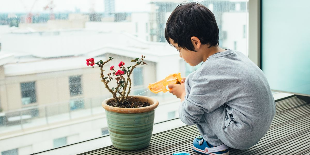 How to kid-proof houseplants, according to a plant expert