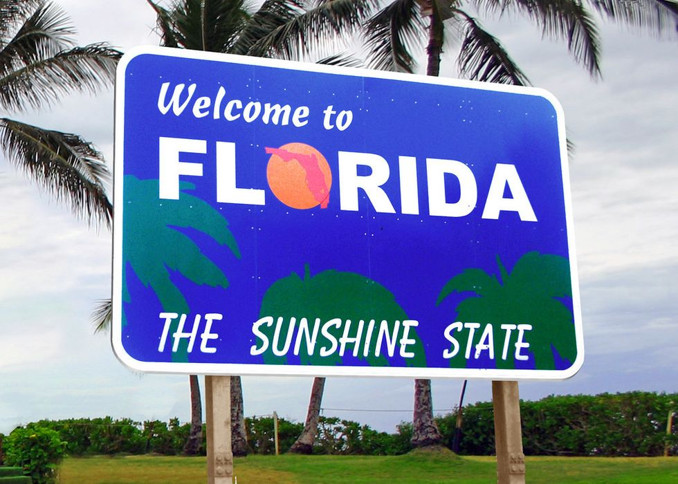7 Things I've Seen as a Floridian