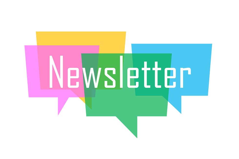 Creator Newsletter: Payton Dembs