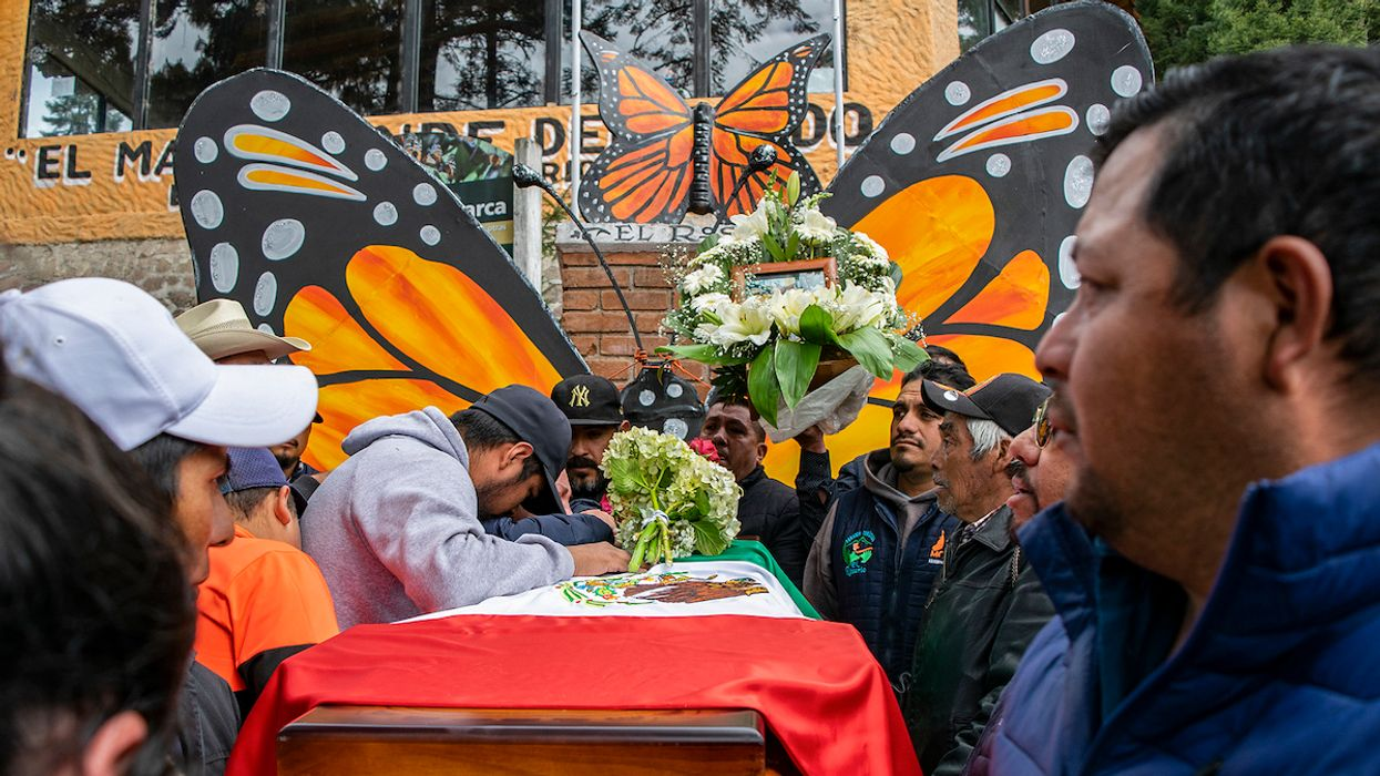 2 Butterfly Defenders Found Dead Within a Week in Mexico
