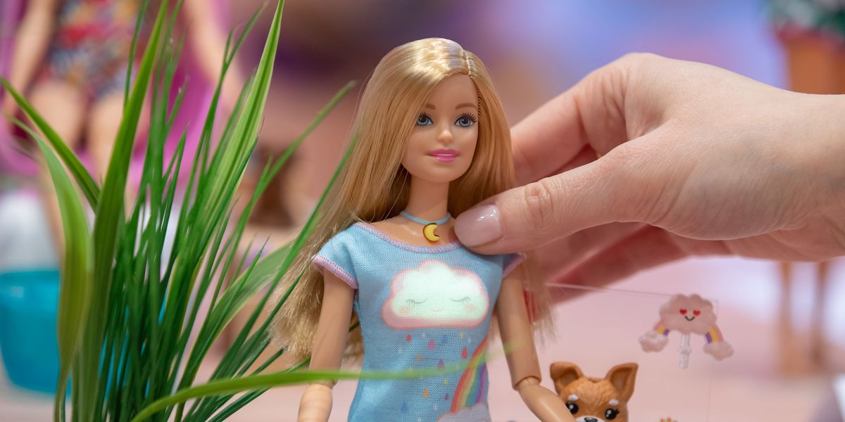 Meet Barbie, the Wellness Influencer