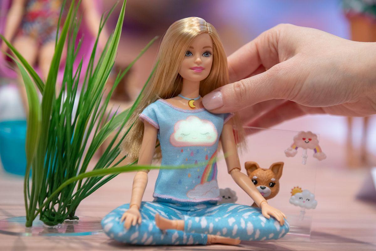 Meet Barbie, the Wellness Influencer