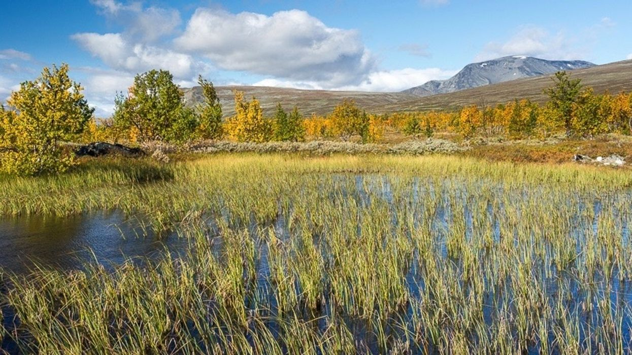 Arctic Permafrost Is Melting so Fast, It's Gouging Holes in the Landscape