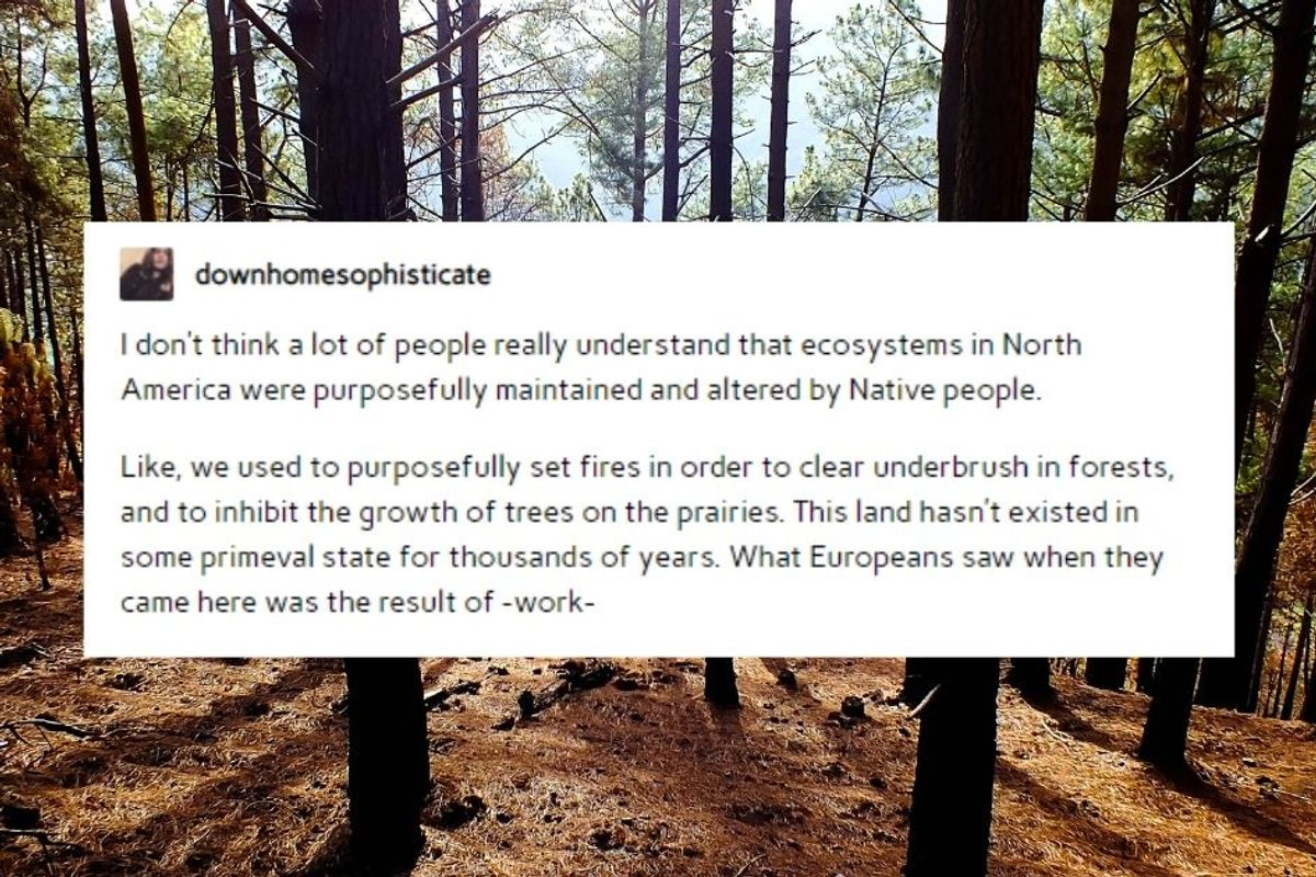 A viral reminder that Native people are the historical experts on sustainability