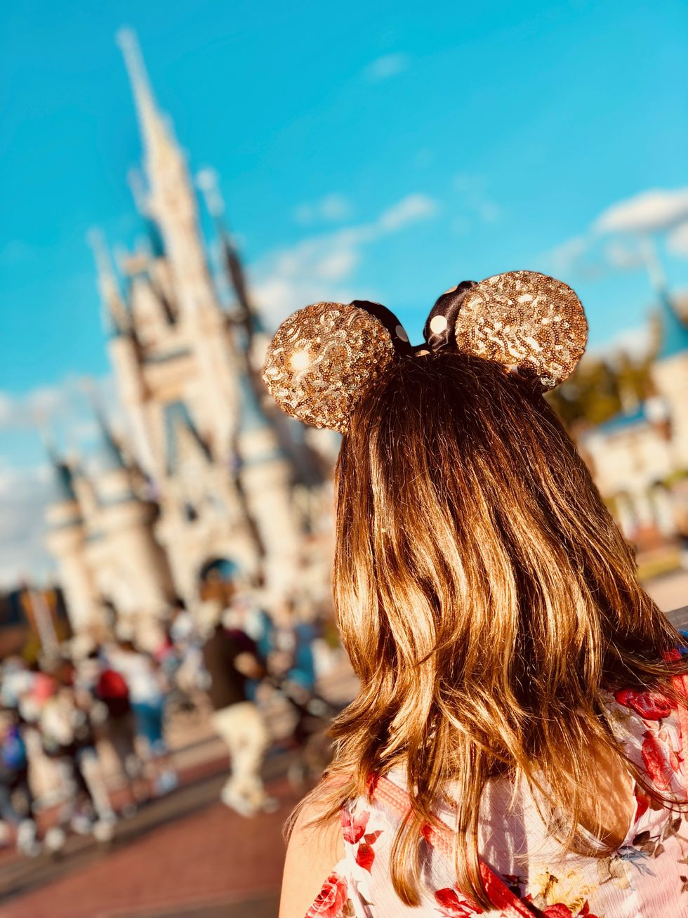 """Confessions Of A Disney College Program Applicant Stuck in """"AR"""""""