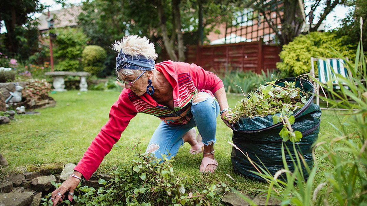How to Turn Your Yard Into an Ecological Oasis