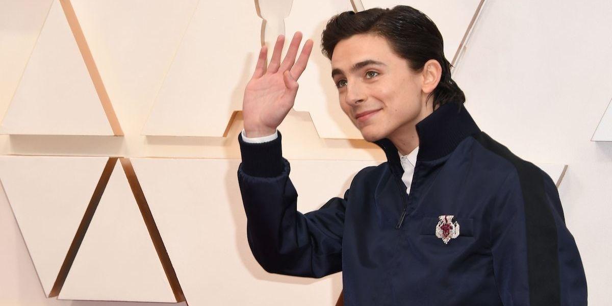 Timothée Chalamet's Oscars Fit Wins For The Most Meme'd Look