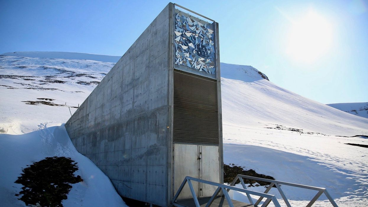 'This Is History in the Making': Cherokee Nation Is First U.S.-Based Tribe to Preserve Seeds in 'Doomsday Vault'