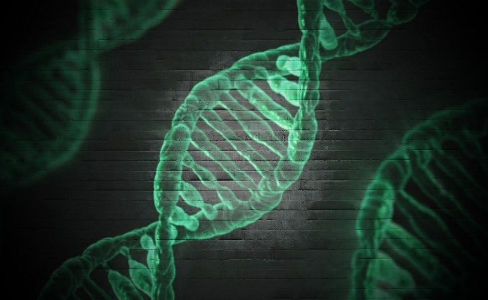 Technology Is Neither Good Or Evil, But Gene Editing Risks Crossing The Line