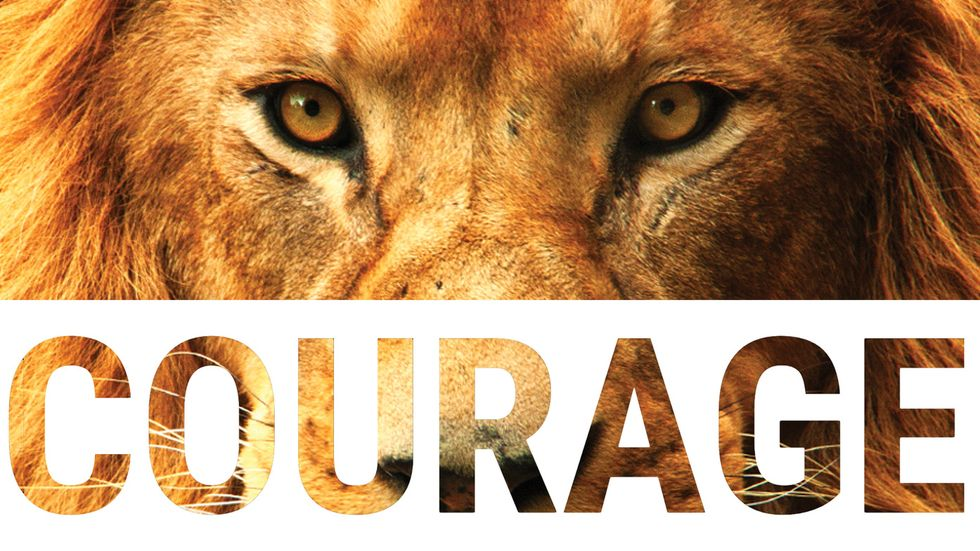 Unleashing Your Inner Courage