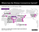 The Graphic Truth: Where has the Wuhan coronavirus spread?