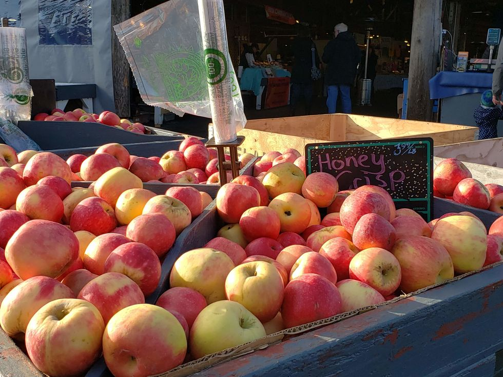 Honeycrisp Apples for sale at Olympia Farmers Market